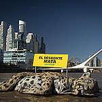 Apareció un yaguareté muerto en Puerto Madero