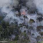 Greenpeace le pide a Bolsonaro que frene el fuego en el Amazonas