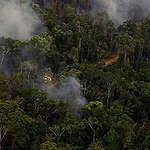 Amazonas: el fuego sigue avanzando sobre bosques protegidos