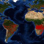 Los incendios forestales en todo el mundo agudizan la crisis climática