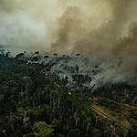 Las 3 causas de los incendios en el Amazonas