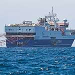 Greenpeace denuncia bombardeos acústicos en aguas argentinas