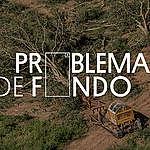 El Problema De Fondo: Descargá nuestros fondos para difundir la protección de bosques en tus videollamadas y redes sociales