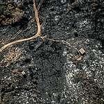 """Sobrevuelo y documentación de los incendios en Córdoba: """"Estamos ante un verdadero ecocidio"""""""