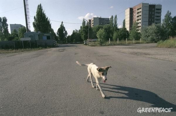Que savez-vous à propos de Tchernobyl ? 15 faits inquiétants…