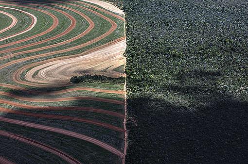 Soja in Brazilië