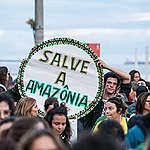 Wat kan ik doen voor het Amazonewoud?