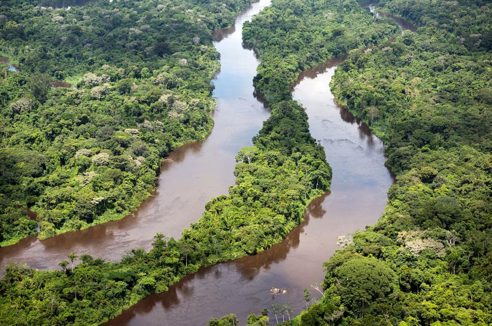 Red de biodiversiteit, samen en nu!