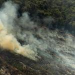 Greenpeace maakt beelden van illegale branden in de Amazone