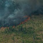 Brazilië brandt