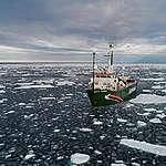 Noordpool in gevaar: zeeijs bereikt tweede laagste peil ooit gemeten