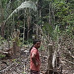 Zij aan zij staan met de beschermers van het Amazonewoud