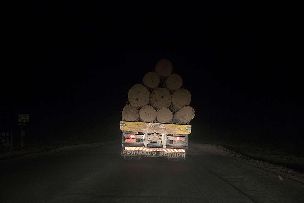 Caminhão leva madeira ilegal durante a noite.