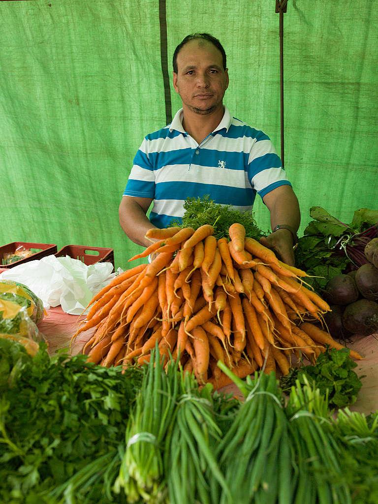 Homem mostra cenoura agroecológica.