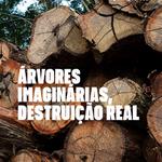 Árvores imaginárias, destruição real