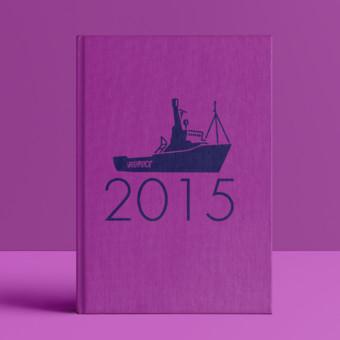 Prestando Contas - Relatório Anual 2015