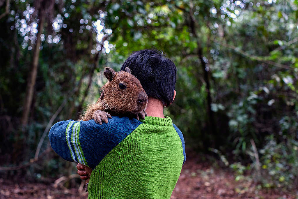 Aratiri, 9 anos, vive exposto a veneno em comunidade indígena no Mato Grosso do Sul