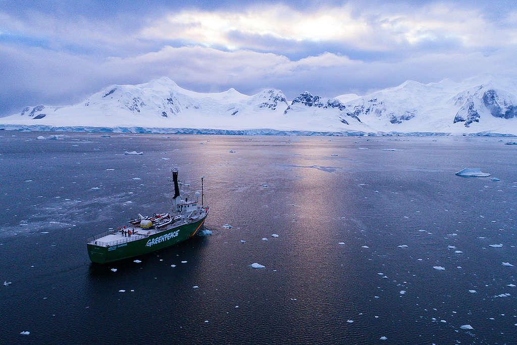 Navio Arctic Sunrise navega na Antártida