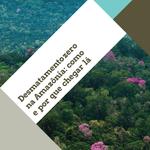 Estudo lançado na COP23 indica caminhos para o Brasil zerar o desmatamento na Amazônia