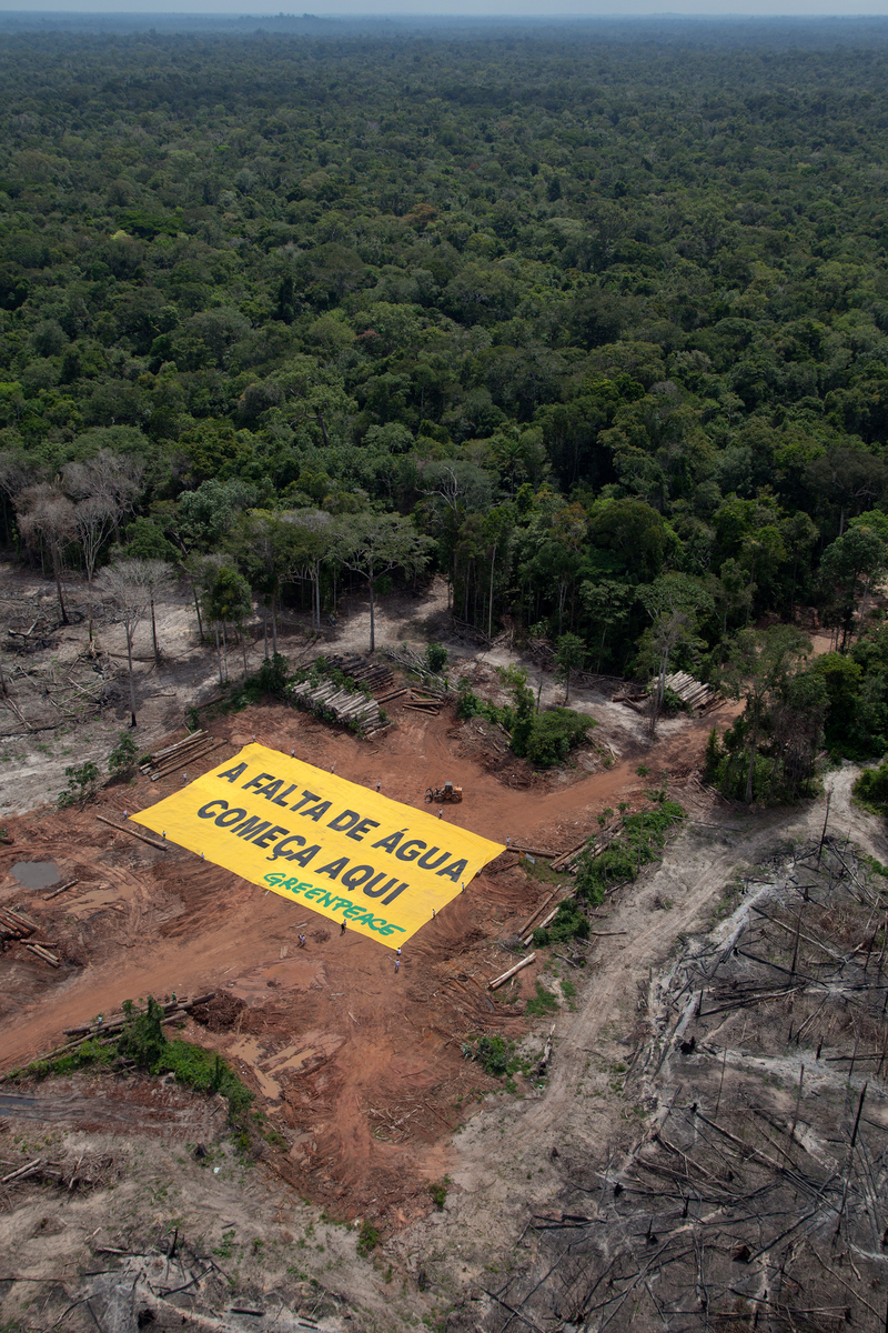 Deforestation and Water Crisis Banner in the Amazon. © Marizilda Cruppe