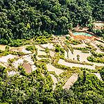 Foto aérea mostrando garimpo dentro da terra indígena Sawré Muybu
