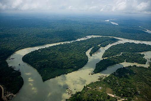 Vista aérea da floresta amazônia © Daniel Beltrá