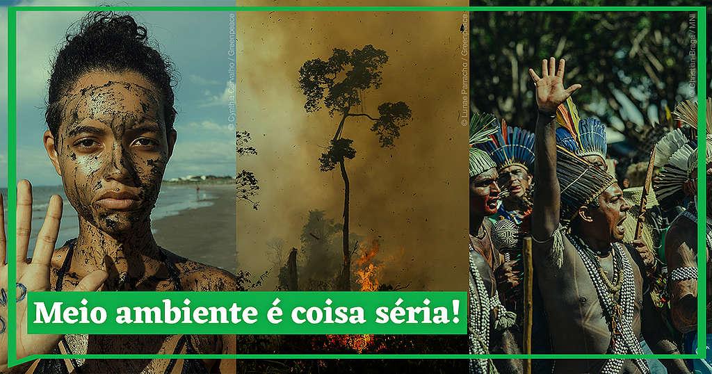 Todos Juntos Em Defesa Do Meio Ambiente Greenpeace Brasil