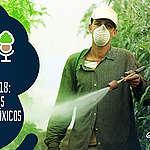 As Árvores Somos Nozes 02 – Eleições 2018: os ruralistas são (agro)tóxicos