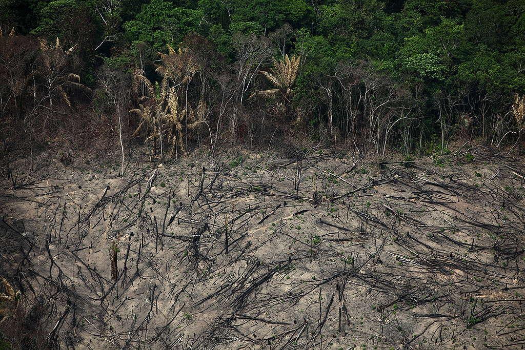 Área desmatada em Marabá, no estado do Pará.