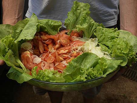 Salada ecologica
