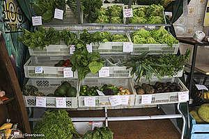 venda de orgânicos