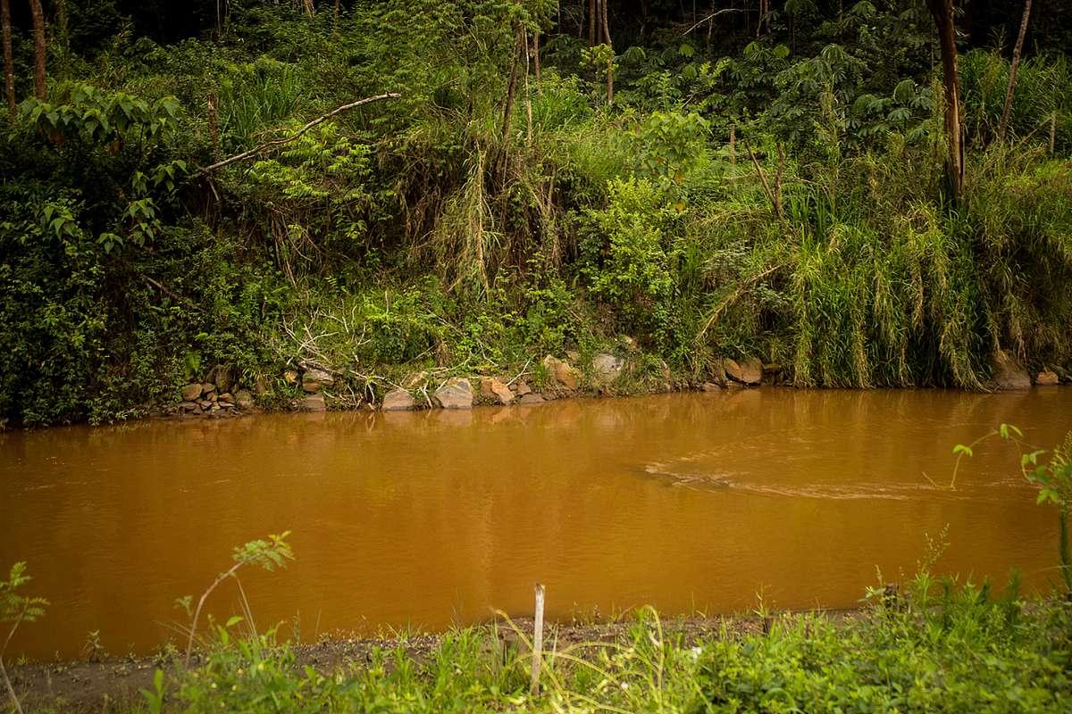Trecho do rio Gualaxo do Norte, por onde a lama se espalhou para todo o rio Doce causando perdas irreparáveis para a biodiversidade.