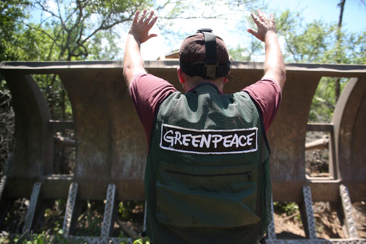 Ativista do Greenpeace bloqueia uma escavadeira usada para desmatar. © Hernan Vitenberg