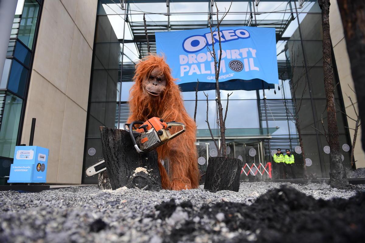 Orangotando em uma floresta queimada criada na sede da Oreo. © Chris J Ratcliffe
