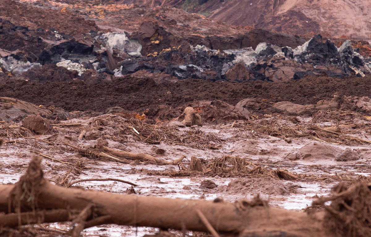 Brumadinho Environmental Crime in Brazil. © Nilmar Lage