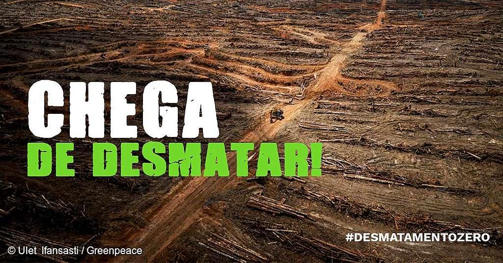 Trecho de desmatamento na Amazônia.
