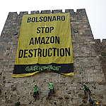 Em Israel, Greenpeace pede urgência na proteção da Amazônia a Bolsonaro