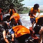 Ação de voluntários coleta mais de 76 kg de lixo em praia de Bertioga (SP)