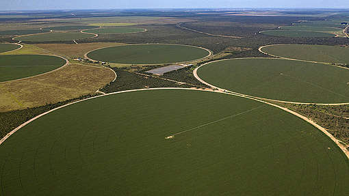 Soya Production in the Cerrado Region, Brazil. © Marizilda Cruppe / Greenpeace
