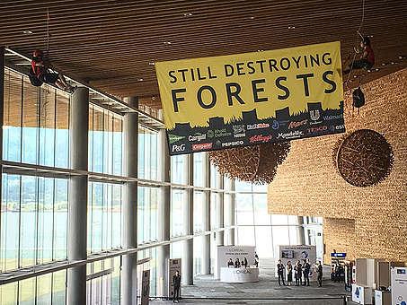 Banner do Greenpeace lembra às empresas que elas continuam desmatando florestas por causa da ganância