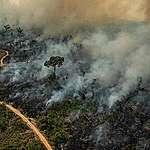 Queimadas na Amazônia: número aumentou 145% na região