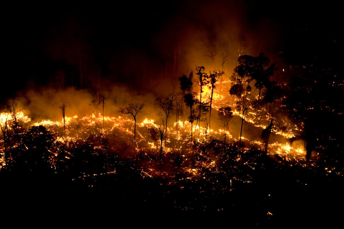 Resultado de imagem para Imprensa do mundo repercute incêndios na Amazônia