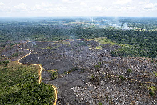 Incêndio Floresta na Amazônia 2018. © Daniel Beltrá / Greenpeace