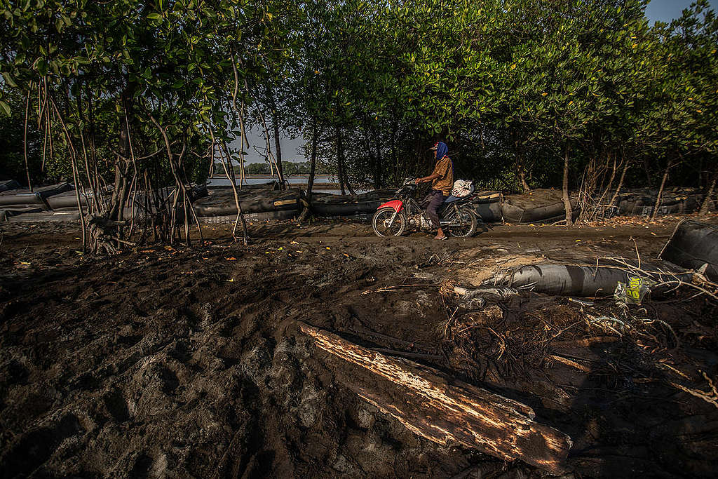 Oil Spill in Karawang, West Java. © Jurnasyanto Sukarno / Greenpeace