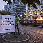"""Ativistas do Greenpeace Alemanha mostram cartaz com a frase """"pare a destruição da Amazônia""""; tronco de árvore com a frase em inglês """"stop killing forests"""" queima ao fundo"""