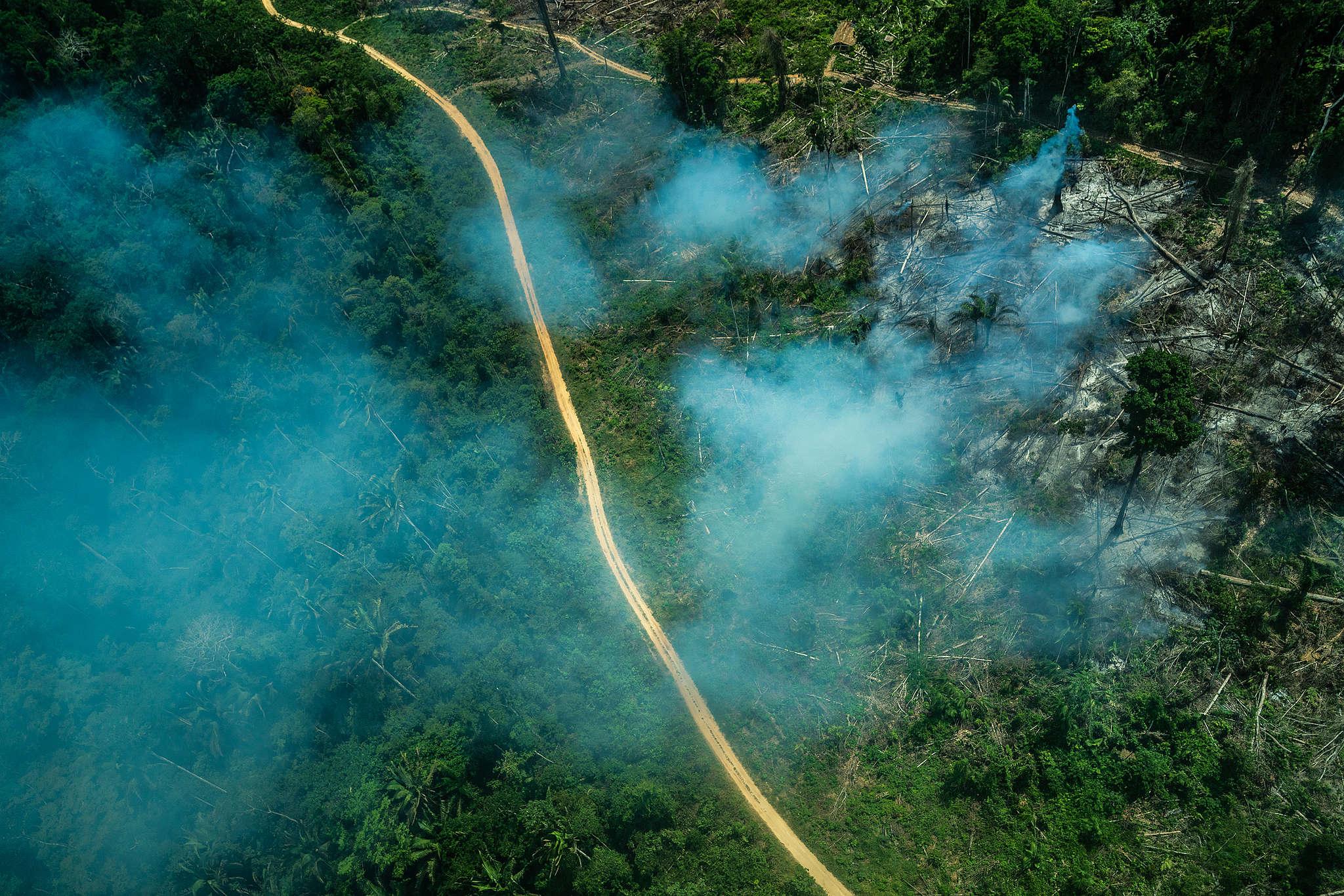 Sobrevoo realizado na Terra Indígena Ituna-Itatá em setembro de 2019, na época de queimadas. © Fábio Nascimento / Greenpeace