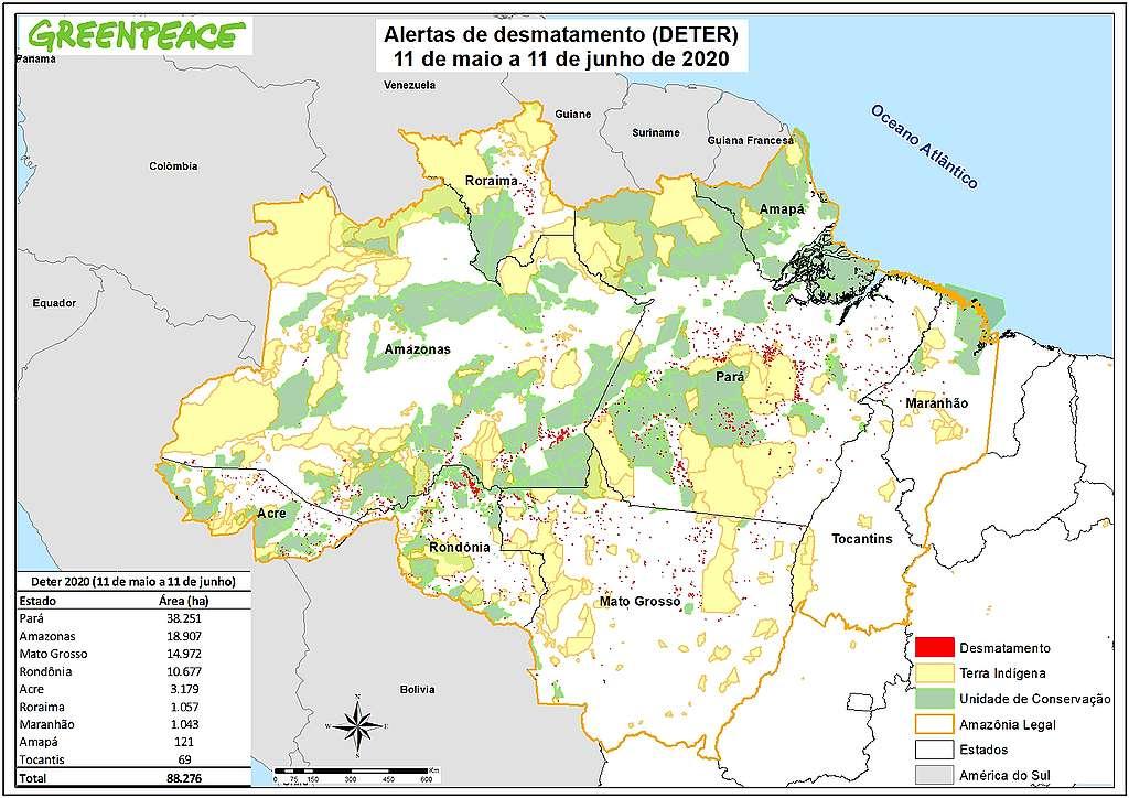 Alertas de desmatamento (DETER) - 11 de maio a 11 de junho de 2020