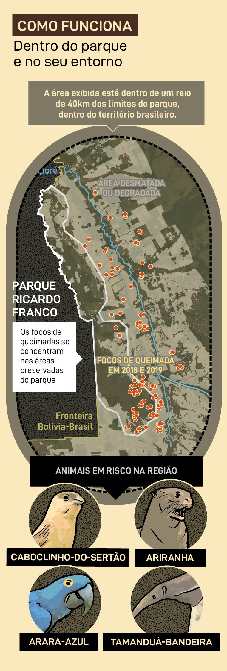 Áreas desmatadas Parque Ricardo Franco