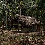 Roberto Carlos mostra casa onde famílias fizeram isolamento na mata © Christian Braga / Greenpeace