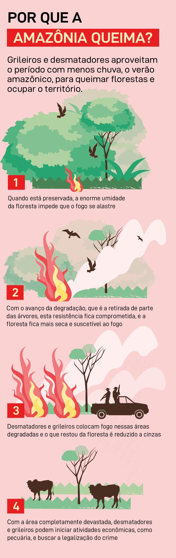Por que a Amazônia queima?
